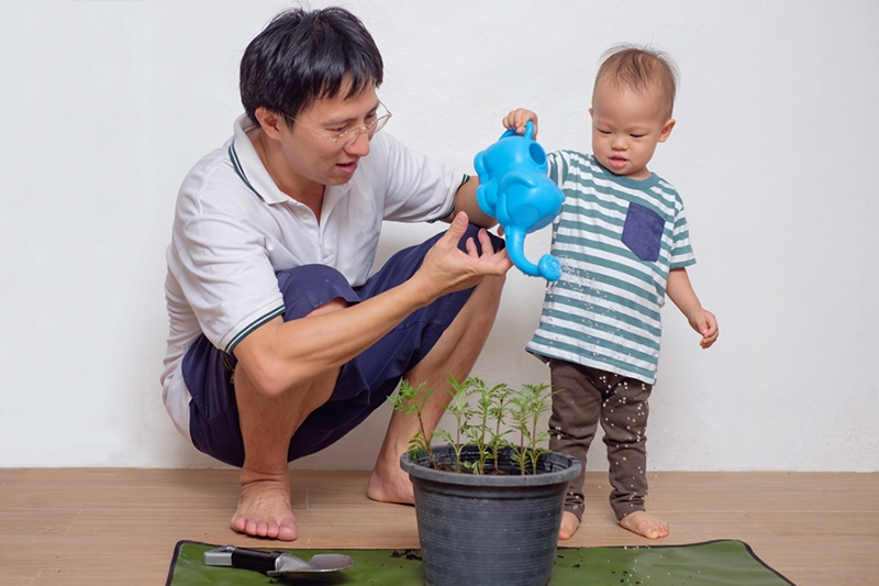 Smiling Middle age asian father teaching his cute little asian 18 months / 1 year old toddler baby boy child about plants at home, 4 Chores That Can Improve Your Home's Indoor Air Quality | in Savannah
