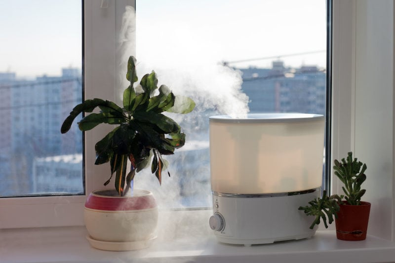 Air filtration humidifier spreading steam into the living room